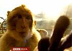 Reprodução/BBC