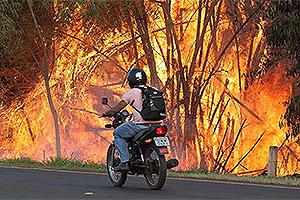 Edson Silva - 15.ago.14/Folhapress